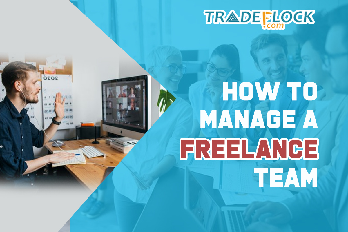 How to Manage Freelance Team – Managements, Budget, and Software