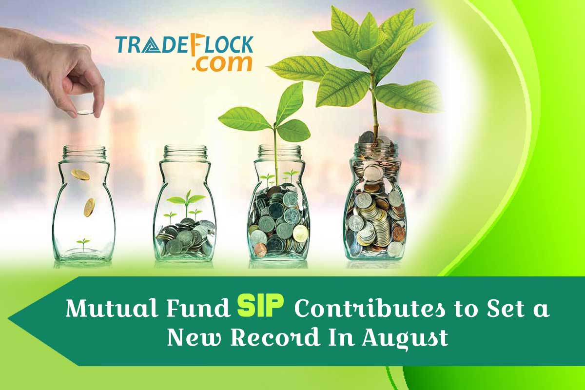 Mutual Fund SIP Contributes to Set a New Record In August