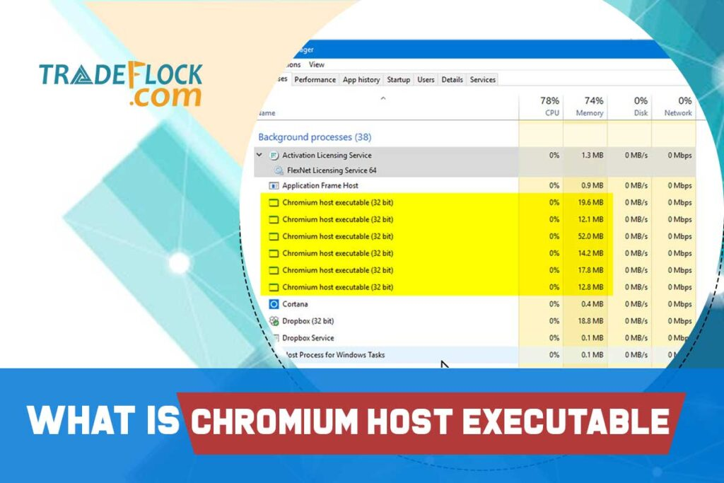 What is Chromium Host Executable? How to Resolve it?